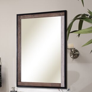 Look for Verticali Framed Wall Mirror By Sagehill Designs
