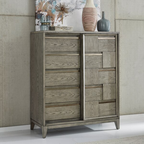Ehrhardt Wood Sliding Door 5 Drawer Chest by Brayden Studio