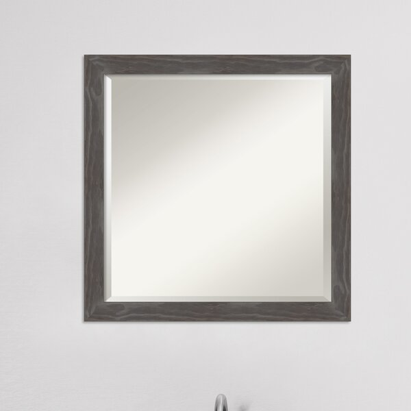 Gagnier Beveled Bathroom / Vanity Mirror
