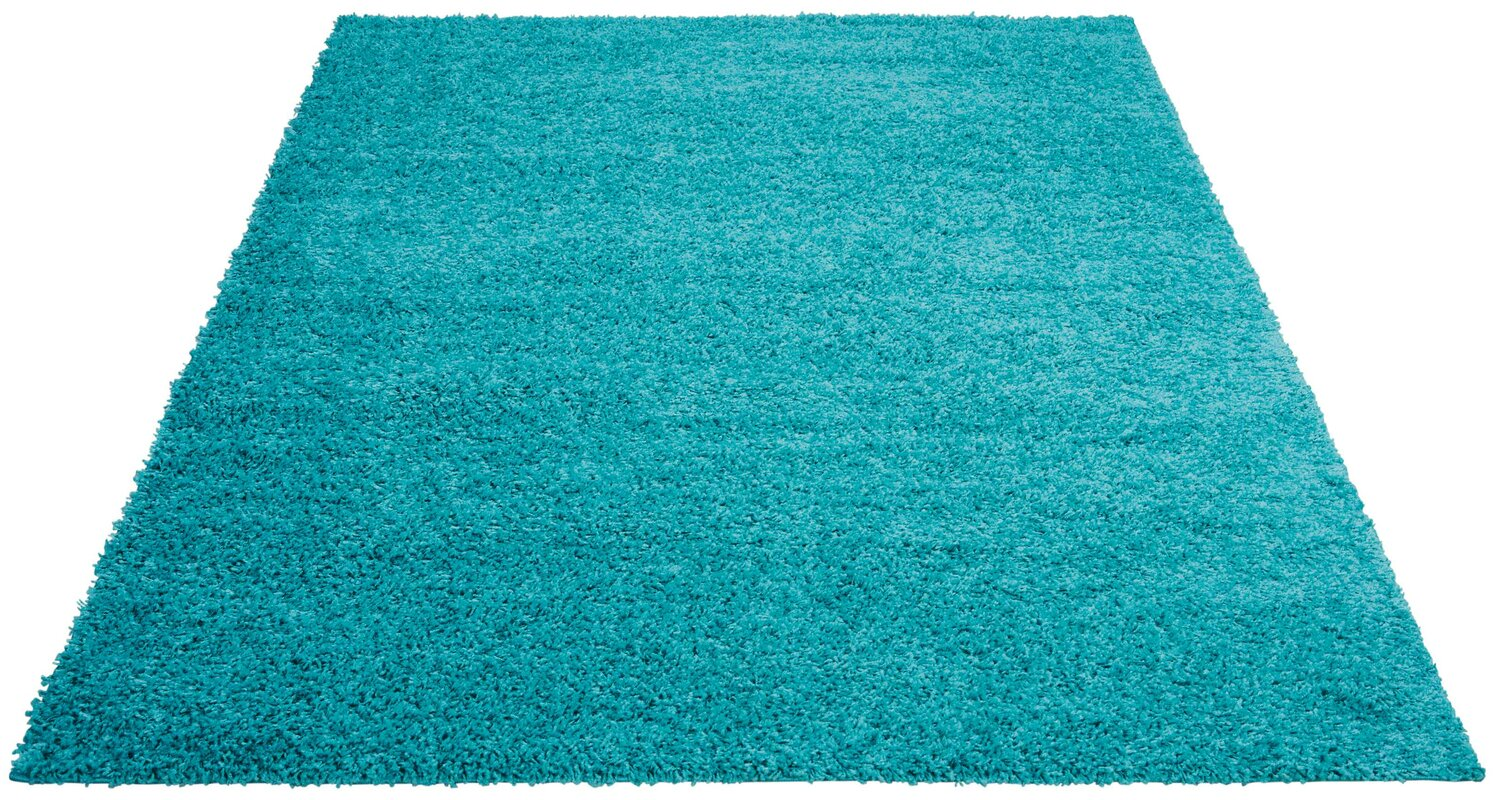 Alexis Turquoise Area Rug
