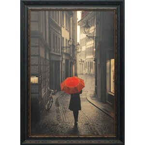 'Red Rain' Framed Photographic Print by Red Barrel Studio