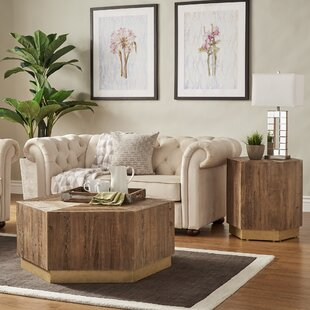 Looking for Kershner 2 Piece Coffee Table Set By Everly Quinn