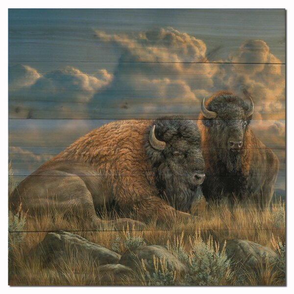 Distant Thunder Bison Painting Print Plaque by WGI-GALLERY