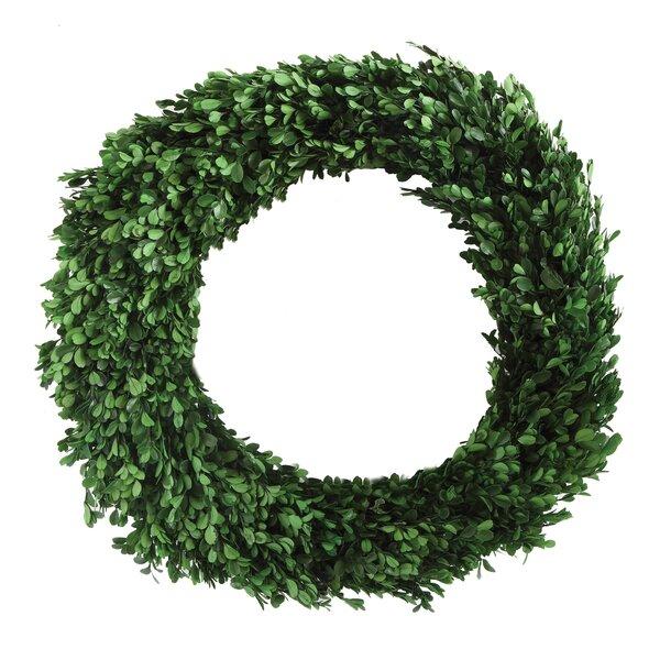 Boxwood Wreath by Laurel Foundry Modern Farmhouse