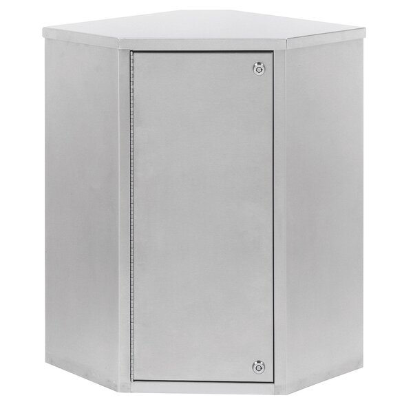 22.75 W x 24 H Wall Mounted Cabinet by Omnimed