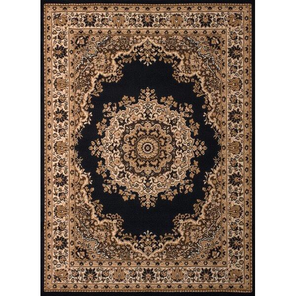 Dallas Floral Kirman Black Area Rug by United Weavers of America