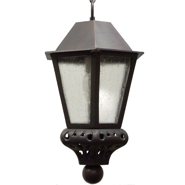 Phillipstown 1-Light Outdoor Hanging Lantern by Alcott Hill