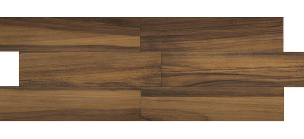 Acacia Valley 18 x 3 Porcelain Bullnose Tile Trim in Ridge by Daltile