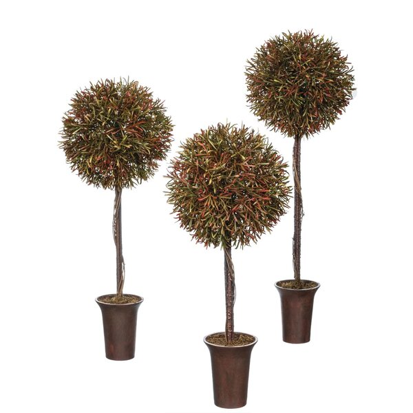 3 Pieces Asparagus Boxwood Topiary Set by Gracie Oaks