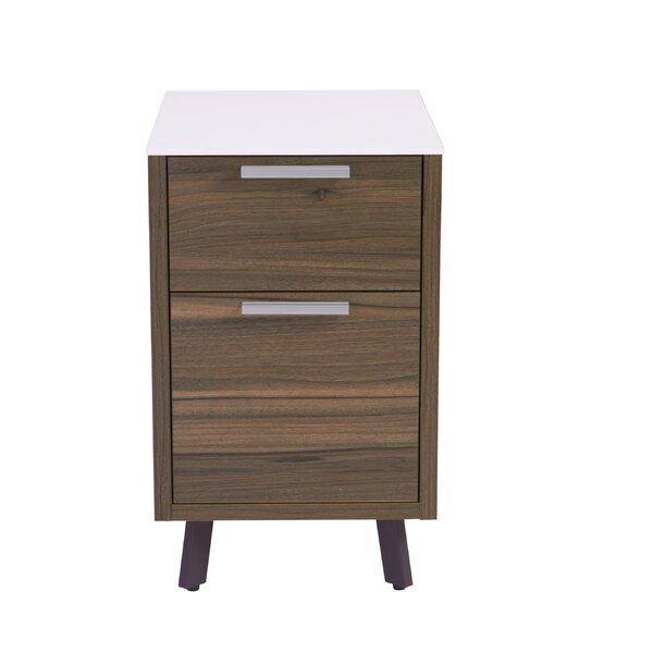 Barkeyville 2-Drawer File Cabinet by Wade Logan