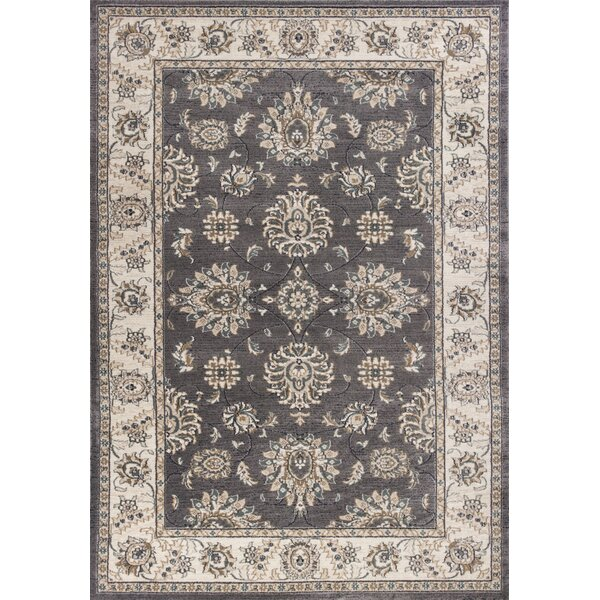Arnot Gray/Ivory Area Rug by Charlton Home