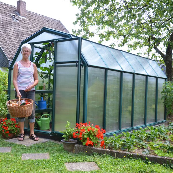 EcoGrow 2 Twin Wall 6 Ft. W x 12 Ft. D Greenhouse by Rion Greenhouses