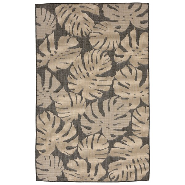 Stillwater Fronds Gray/Brown Indoor/Outdoor Area Rug by Bay Isle Home