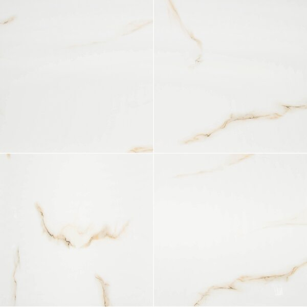 Aria 24 x 24 Porcelain Tile in Bianco by MSI