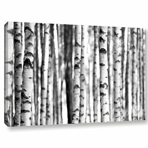 'White Birch' by Trees Graphic Art on Wrapped Canvas by Zipcode Design
