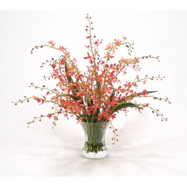 Waterlook Coral Vanda Orchids in Hourglass Vase by Distinctive Designs