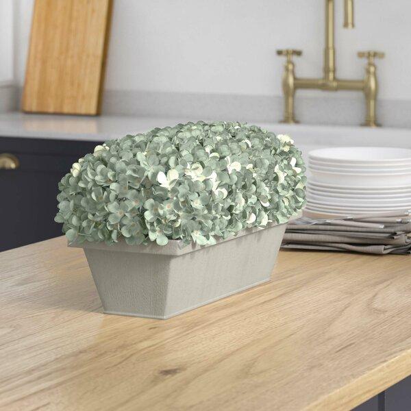 Hydrangea Centerpiece in Planter by Beachcrest Home