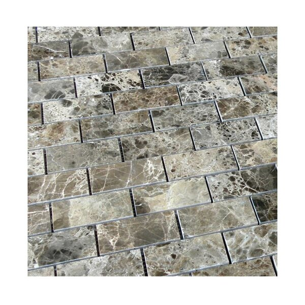 Polished 2 x 4 Natural Stone Mosaic Tile in Dark Emprador by QDI Surfaces