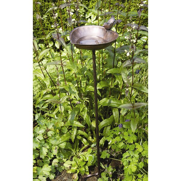 Heart Shaped Birdbath by ACHLA