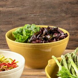 Biju 2 Piece Mixing Bowl Set by Euro Ceramica