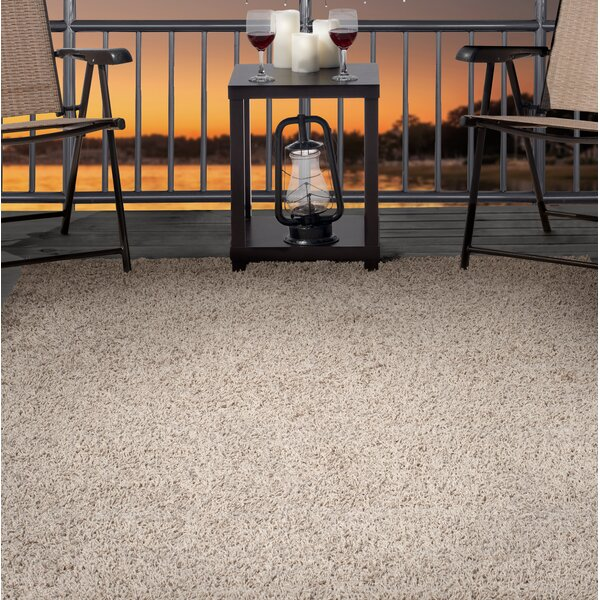 Shag Beige Indoor/Outdoor Area Rug by Plymouth Home