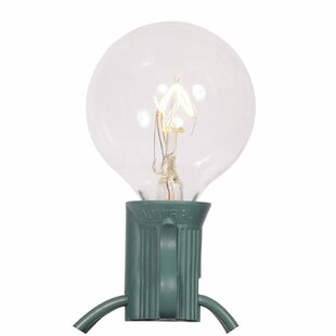 Affordable Price 25-Light Globe String Lights By Vickerman