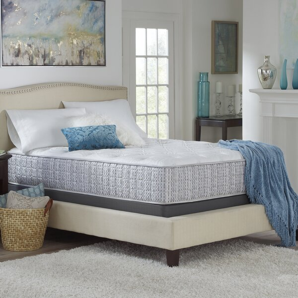 13 Plush Innerspring Mattress by Alwyn Home