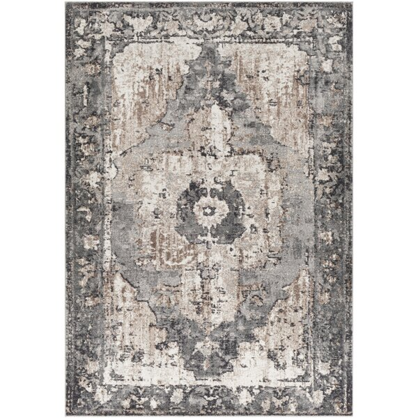 Almendarez Distressed Charcoal/Taupe Area Rug by Bungalow Rose