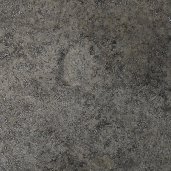 Silver Travertine 12'' x 12'' Travertine Field Tile in Honed Silver by MSI