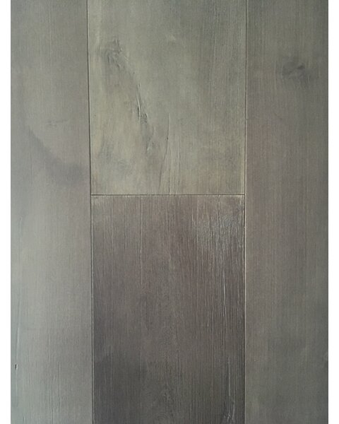 Glacier Betula 7.5 Engineered Hardwood Flooring in Gray Stone by Dekorman