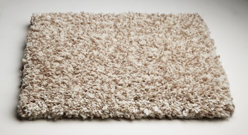 Bouvier Hand Woven Ivory Area Rug by Wrought Studio