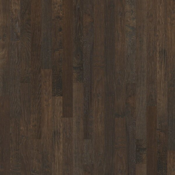 Zellwood 3-1/4 Solid Hickory Hardwood Flooring in Emerson by Shaw Floors