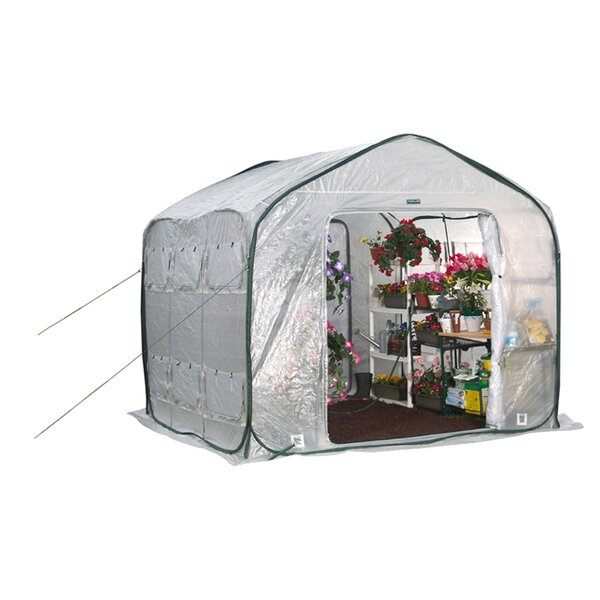Cold Frame Greenhouses You\'ll Love | Wayfair