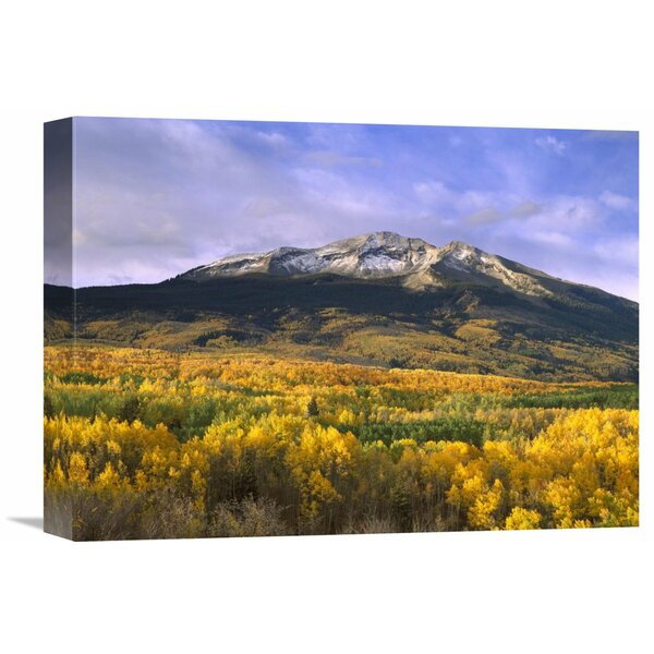 Nature Photographs East Beckwith Mountain and Trees in Fall Color, Gunnison National Forest, Colorado Photographic Print on Wrapped Canvas by Global Gallery