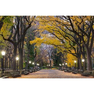 Poet's Walk Central Park Photographic Print by KAVKA DESIGNS