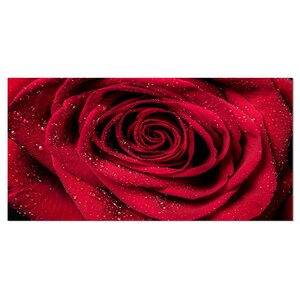 Red Rose Petals with Rain Droplets Floral Photographic Print on Wrapped Canvas by Design Art