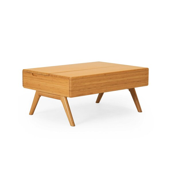 Halvorson Solid Wood Lift Top Coffee Table with Storage