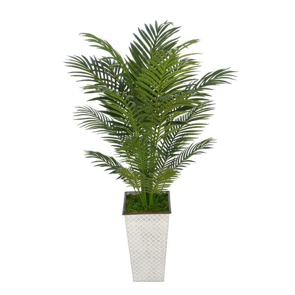 Artificial Floor Areca Palm Tree in Decorative Vase by Bay Isle Home
