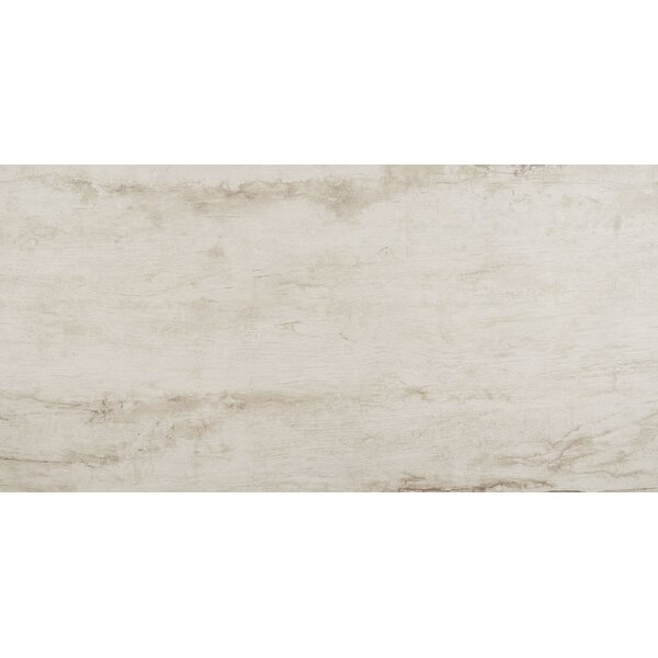 Season Wood 24 x 48 Porcelain Wood Look Tile in Snow Pine by Daltile