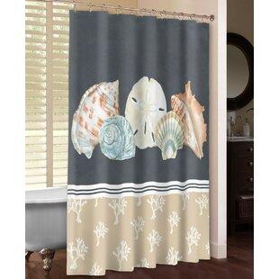 Shells On Slate Shower Curtain