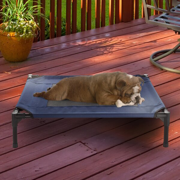 Elevated Cot by Petmaker