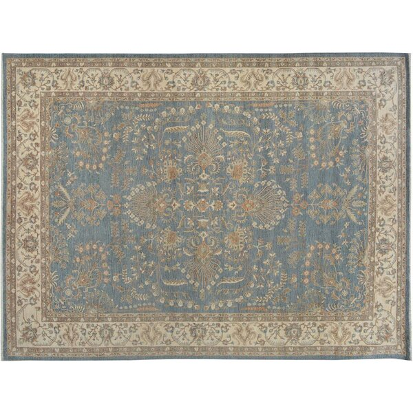 Xenos Hand-Knotted Wool Gray/Ivory Indoor Area Rug by Astoria Grand