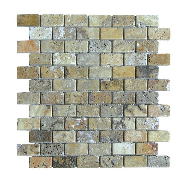Tumbled 1 x 2 Natural Stone Mosaic Tile in Fantastico by QDI Surfaces