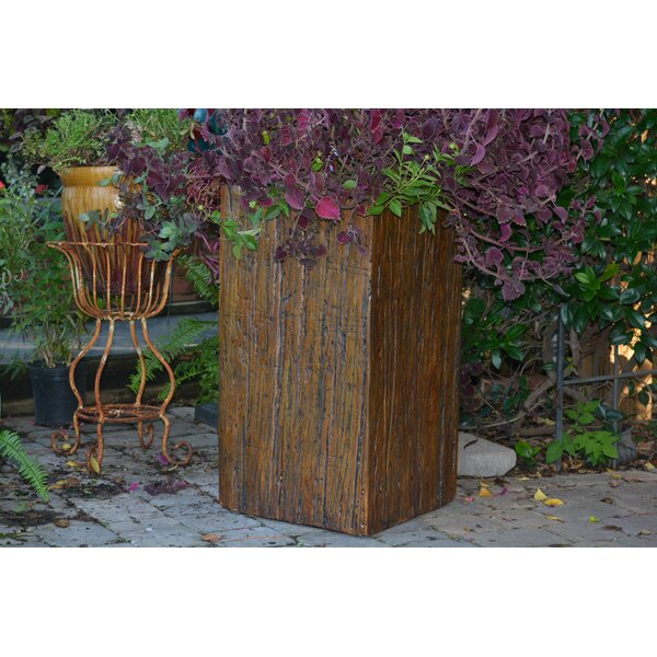 Straight Driftwood Pot Planter by MPG Planters