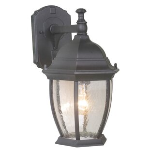 Best Deals Oxford 2-Light Outdoor Wall Lantern By Mariana Home