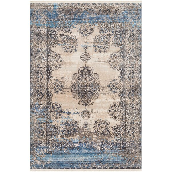 Elvis Distressed Vintage Aqua/Beige/Brown Area Rug by Charlton Home
