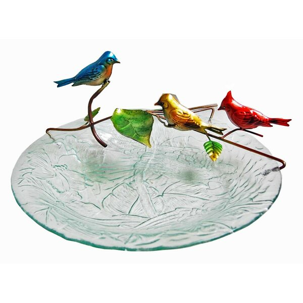 Glass/Metal Bird Tabletop Fountain by Continental Art Center