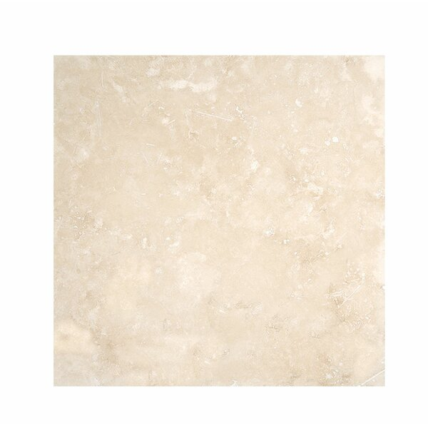 Premium 18 x 18 Travertine Field Tile in Ivory Honed by Parvatile