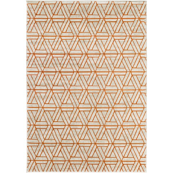 Ginsberg Light Gray/Burnt Orange Area Rug by Langley Street