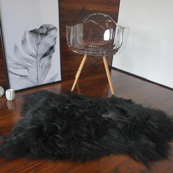 Augustin Sheepskin Black Area Rug by Willa Arlo Interiors